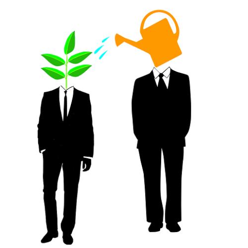 Groninger Ondernemersregeling coach ondernemer