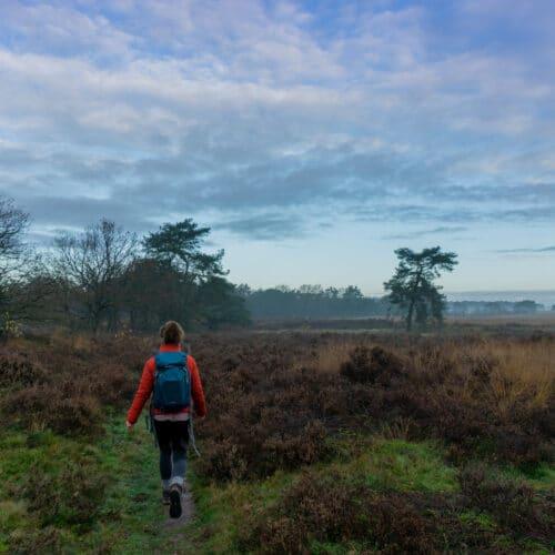 Unieke hike & night-trektocht om compleet offline in de Drentse natuur te zijn