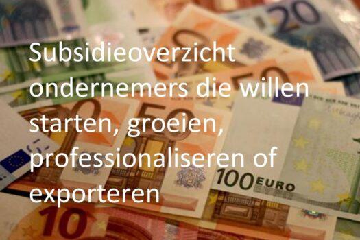 Handig subsidieoverzicht voor ondernemers met ambitie